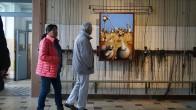 Besucher vor einem Bild des Künstlers Reza Reza aus Luckau